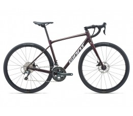 Giant Contend Ar, Rosewood