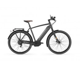 Gazelle Cityzen Speed 380, Eclipse Black Mat